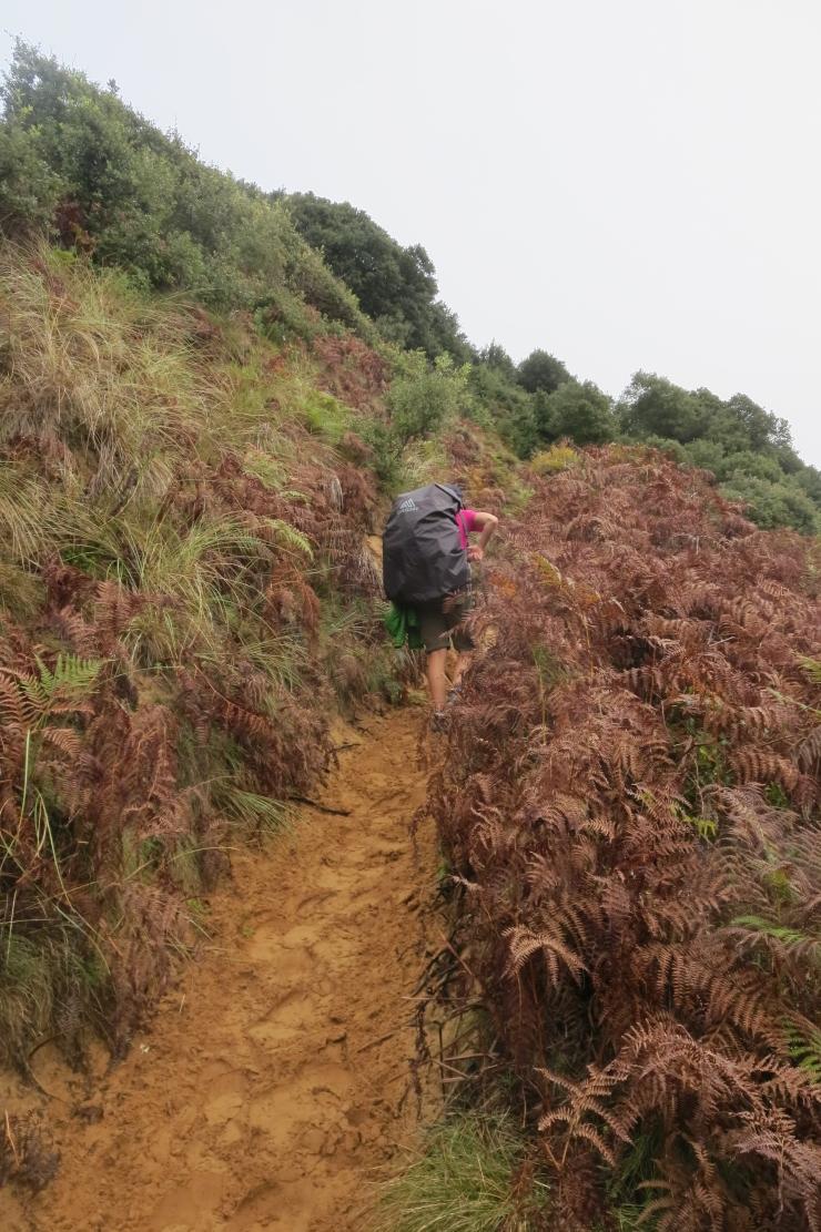 Camino - Day 4 - 006