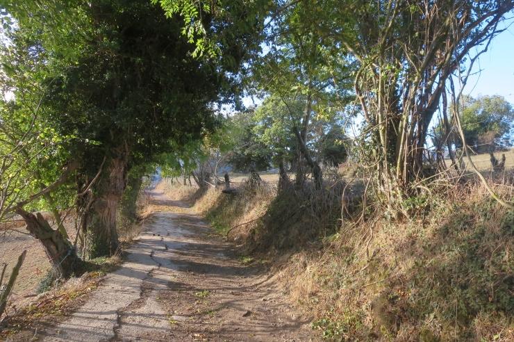 Camino - Day 8 - 009