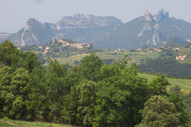 Provence - 024